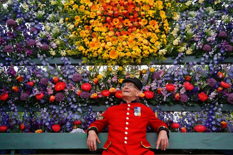 Chelsea flower show guide